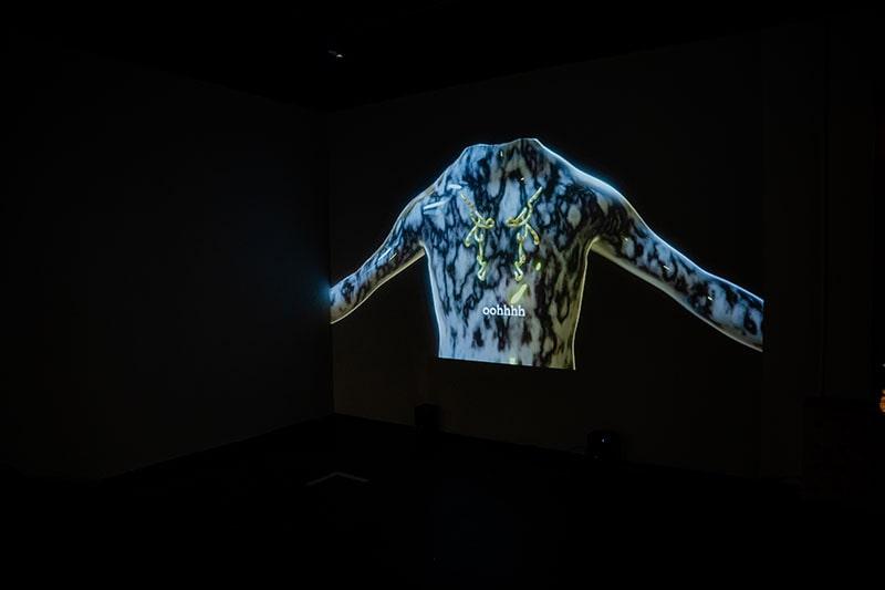 Туомас А. Лайтинен «Protean Sap», 2020 Одноканальное видео, Instagram фильтры © Центр Art & Science Университета ИТМО