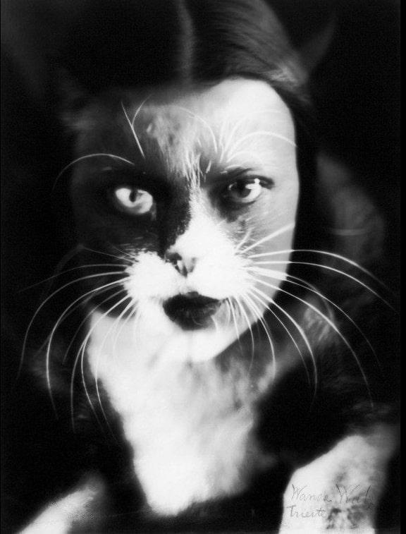 Ванда Вульц «Io + gatto», 1932 © MET, New York