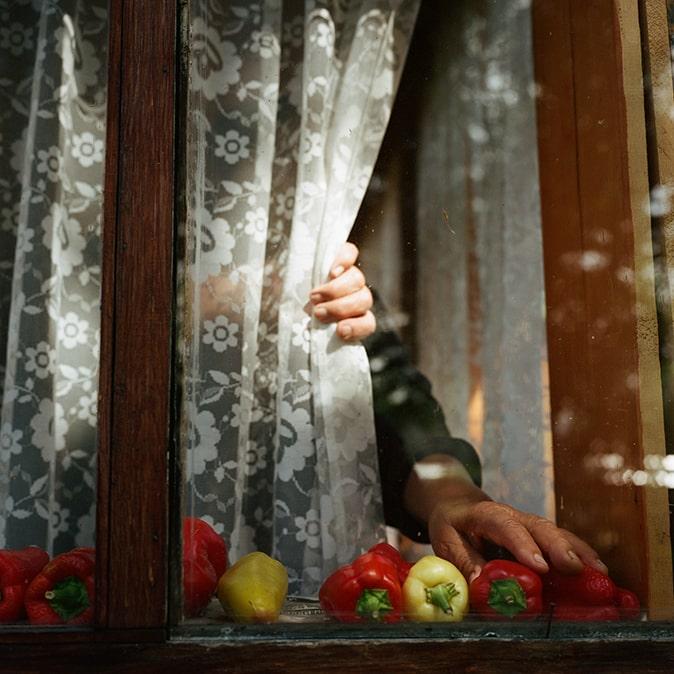 Анастасия Хандоженко «Про бабушку» © Объединение «ВЗ Москвы»