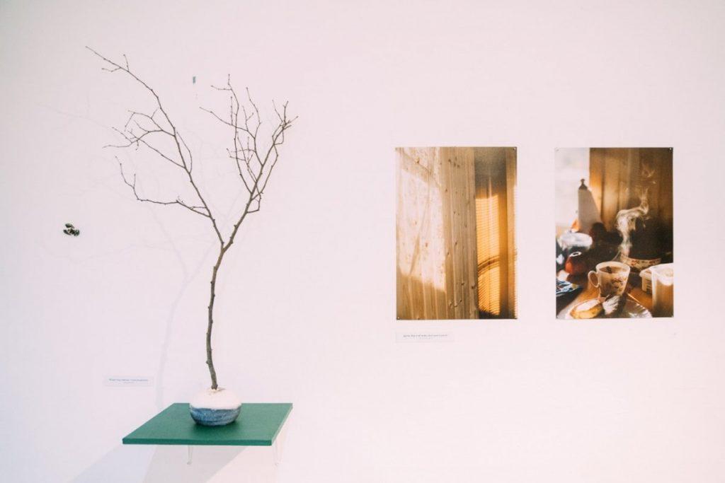 Выставка «Дача, как я её вижу»