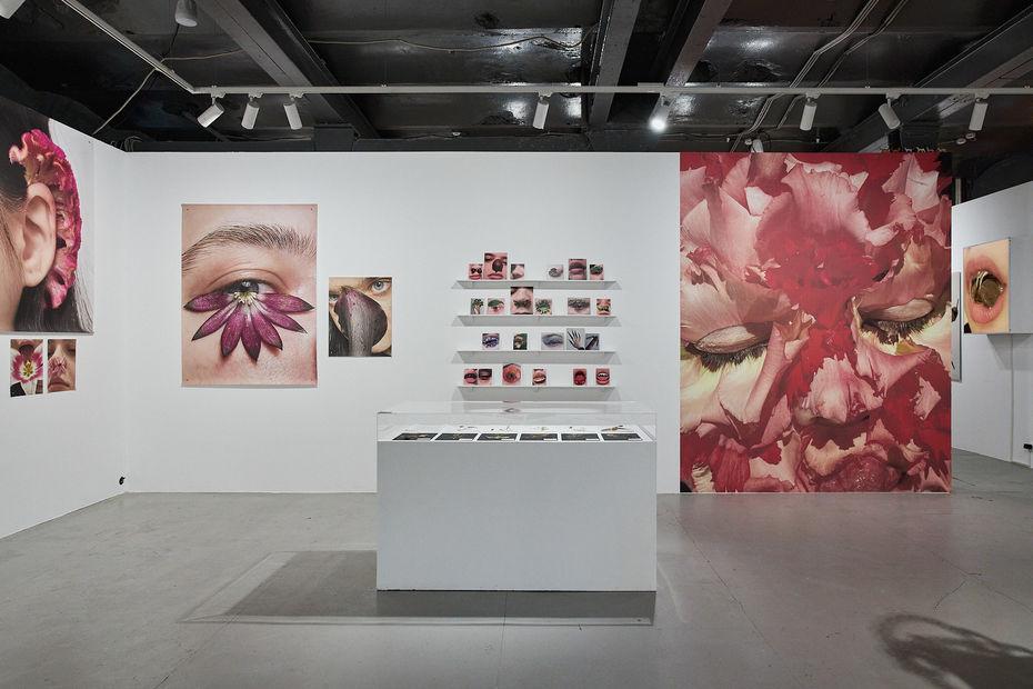 Выставка Кати Правды «XTAL CASTLE» © HSE ART GALLERY