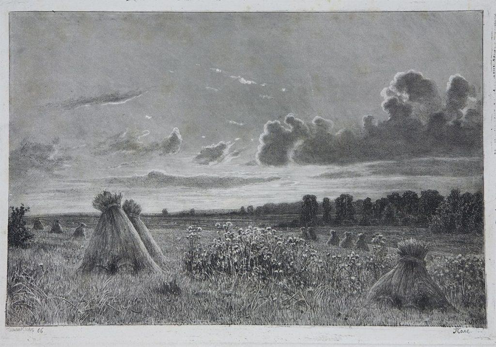 И.И. Шишкин «Поле», 1886 Бумага, офорт, акватинта © КХМ