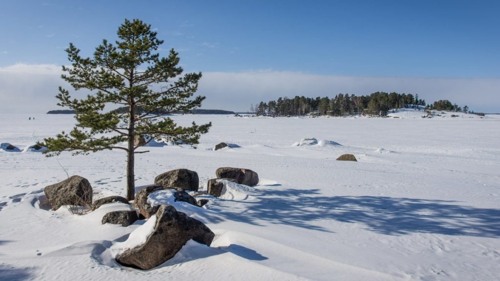 Финский залив в районе Приморска © Точка ART