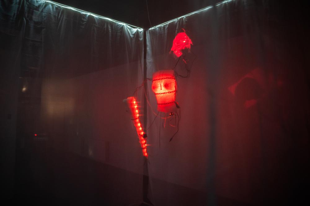 Милена Башкатова, Юлия Кузьмина-Грёза, Дария Пурвина «Psychosomasys» Интерактивная инсталляция